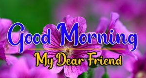 Good Morning all Images Photo HD