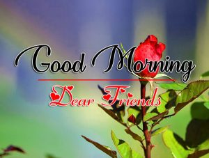Good Morning all Images Photo New