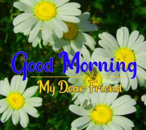 Good Morning all Images Pics New