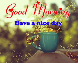 Good Morning all Images Wallpaper 2
