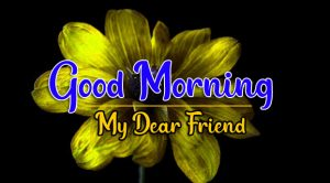 Good Morning all Images Wallpaper