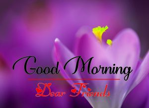 Good Morning all Images Wallpaper Free