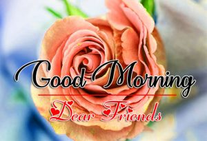 Good Morning all Images Wallpaper With Red Rose