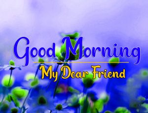 Good Morning all Images Wallpaper for Whatsapp