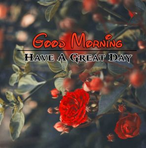 Latest Good Morning Download Images 1