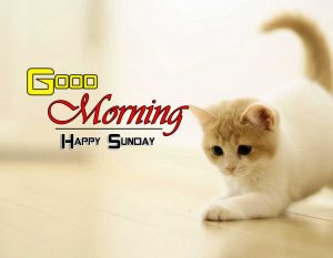 Latest Good Morning Images 5