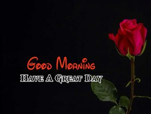 Latest Good Morning Images Download 1
