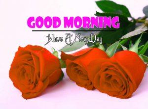 Latest Good Morning Images Free 1