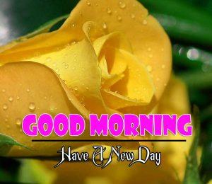 Latest Good Morning Images Free 2