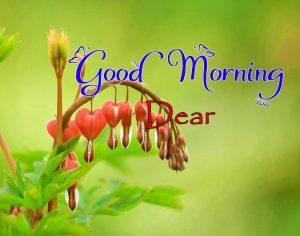 Latest Good Morning Images Photo 2