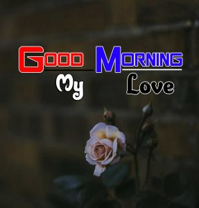 Latest Good Morning Images Wallpaper 4