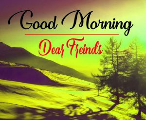 Latest Good Morning Images Wallpaper New Download