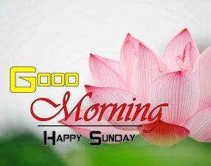 Latest Good Morning Photo Hd 1