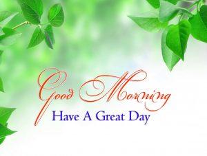 Latest Good Morning Pics Hd Free 1