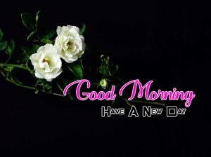 Latest Good Morning Wallpaper Images 2