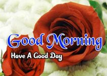 855+ { hd } Good Morning Images Wallpaper Photo download