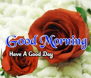 Latest Good Morning Wallpaper Images 3