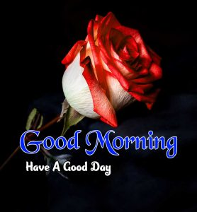 Latest Good Morning Wallpaper Images 5