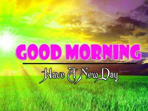 Latest Good Morning Wallpaper hd Free 1
