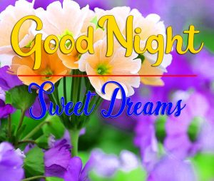 New Free Flower Free Good Night Images Download