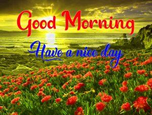 New Free Flower Good Morning Wallpaper Download