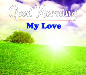 New Free Good Morning Images Wallpaper Download