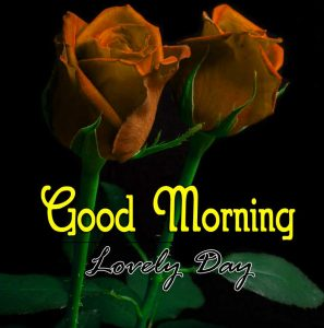 New Good Morning Download 1