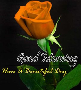 New Good Morning Download Hd