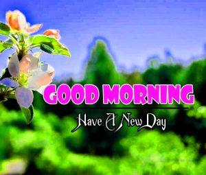New Good Morning Fre Hd Pics