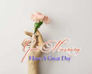 New Good Morning Free Hd Photo