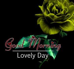New Good Morning Hd Free Wallpaper 1