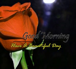 New Good Morning Hd Images 1