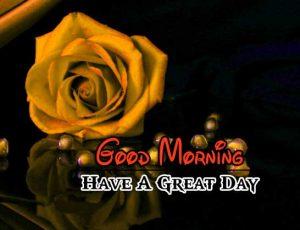 New Good Morning Hd Photo