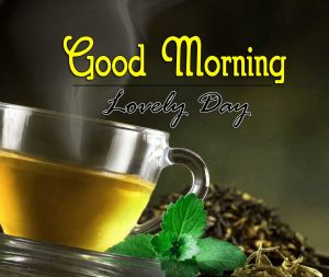 New Good Morning Hd Pictures