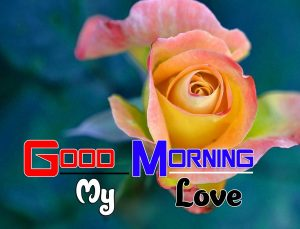 New Good Morning Images 1