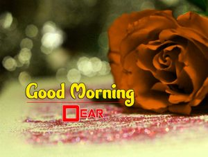 New Good Morning Images Download 1