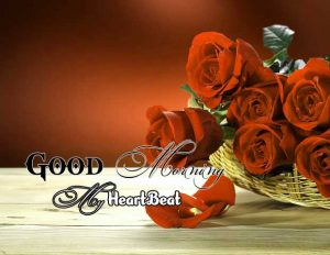 New Good Morning Images Download 4