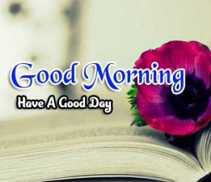 New Good Morning Images Photo 2