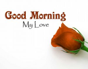 New Good Morning Images Pictures 3