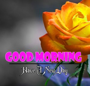 New Good Morning Photo 1