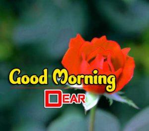 New Good Morning Photo Free