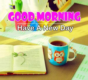 New Good Morning Photo Hd Free 1