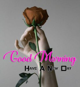 New Good Morning Pictures 1