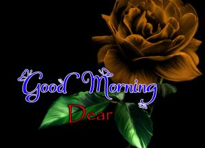 New Good Morning Pictures Free Hd