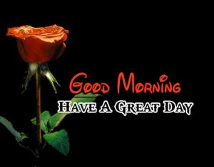 New Good Morning Pictures Images 1