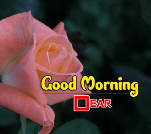 New Good Morning Pictures Images 4