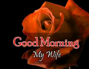 New Good Morning Piuctures