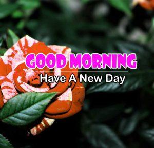 New Good Morning Wallpaper images