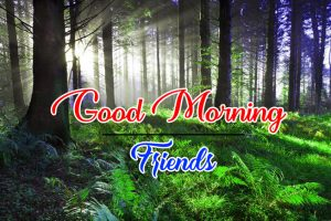 New Top Full HD Good Morning Images Wallpaper Download 3