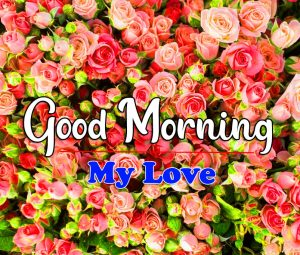 New Top Good Morning Images Wallpaper 1